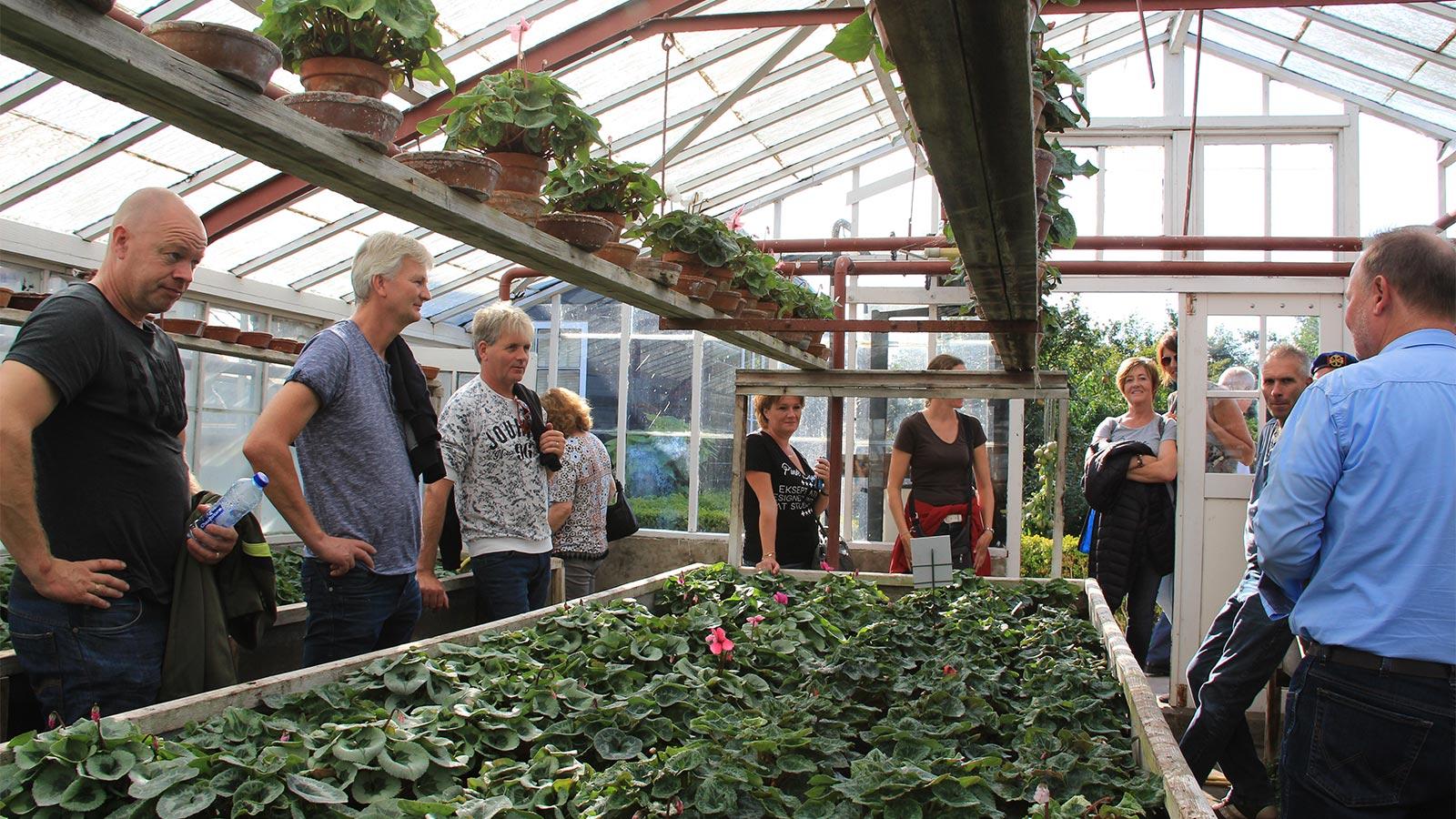 Rondleidingen op de Historische Tuin Aalsmeer, groepen tot max 15 personen. Graag vooraf boeken.