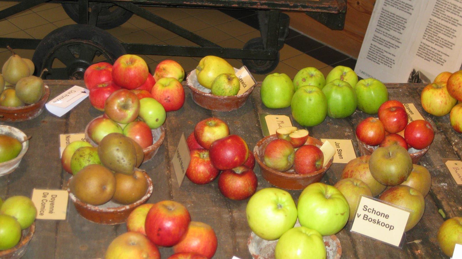 Historische Tuin Aalsmeer - Beleef -  Tuinwinkel - Ruim assortiment fruit
